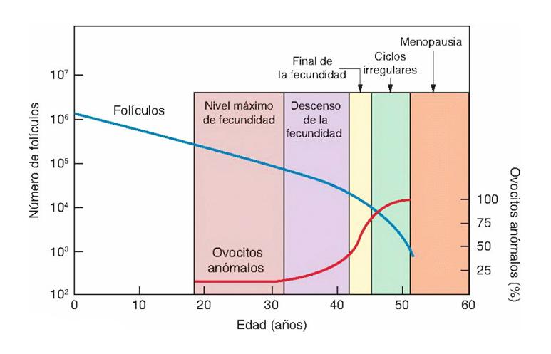 grafica1